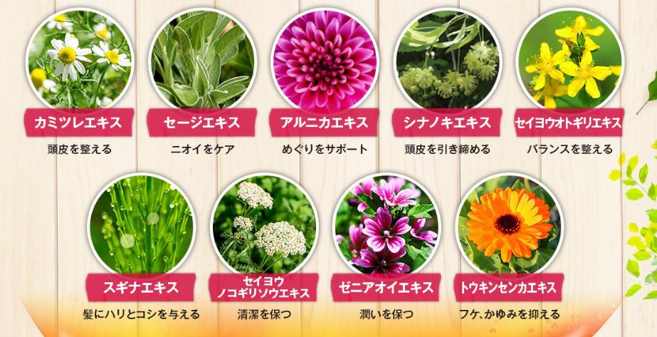 ピンククロス9種の天然エキス成分