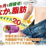 スリムフォー(slimfor)口コミ・効果『オンライフの脂肪を減らすダイエットサプリメント』美ショップ
