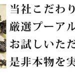最高級普洱生茶口コミ・評価・効果『産地に拘る六大茶山木の舟の厳選プーアル生茶』