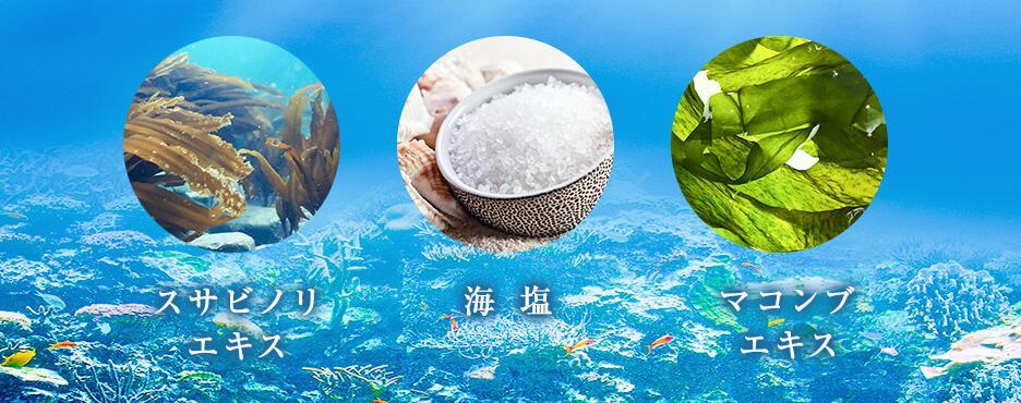 KAMIKA(カミカ) 海の恵み成分